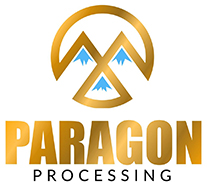 Paragon Processing LLC Logo